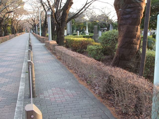 Aoyama cemetery, Foreign section, before construction